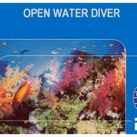 Become a CERTIFIED DIVER!